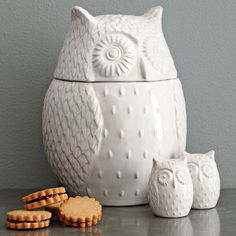 "Owl over again. Like our best-selling Owl Mug, this Owl Cookie Jar is crafted from glazed stoneware. Fill it with cookies and other treats, and spread cheer from kitchen countertops.    • Glazed stoneware.  • White finish.  • 7.4""diam. x 10""h.  • Dishwasher safe.  • Imported."