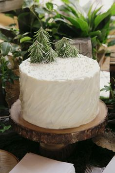Woodland themed cake - decorating & baby shower idea
