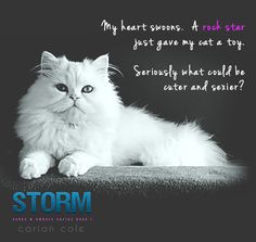 Halo from Storm by Carian Cole (book 1)