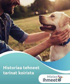 Historiaa tehneet tarinat koirista - Tarinoita koirista   Kaikki tarinat koirista opettavat jonkin jalon opetuksen. Ne opettavat meille, kuinka koirat osoittavat solidaarisuutensa liikuttavalla tavalla.