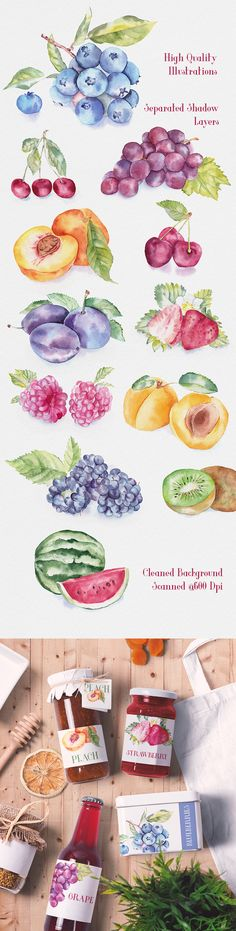 New Fruit Watercolor Illustration Ideas Watercolor Fruit, Fruit Painting, China Painting, Watercolor Artwork, Watercolor Illustration, Watercolor Flowers, Poses References, New Fruit, Food Drawing