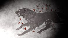 Game of Thrones Wallpaper | Game Of Thrones Stark Wolf Wallpaper #4174 Wallpaper | Wall-Height.com