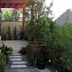 Small Backyard Ideas Design, Pictures, Remodel, Decor and Ideas - page 19