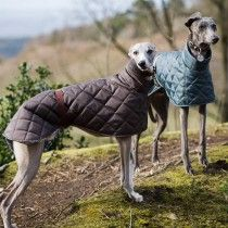 Redhound For Dogs Greyhound and Whippet Quilted Dog Coat Brown