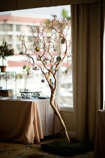 tea cup tree