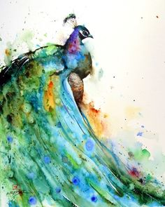 Dean Crouser | Peacock. Watercolor