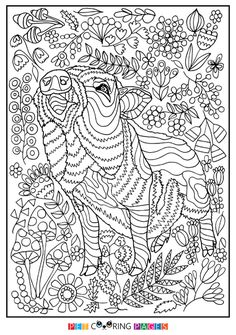 Pig Zentangle Coloring Page 2019 Chinese New Year