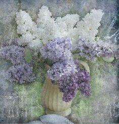Gorgeous lilac art