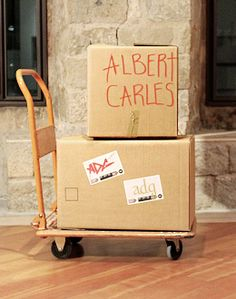 Albert Carles