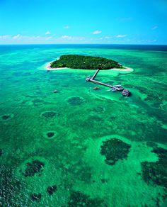Green Island, Australia. Last SCUBA dive here! :)