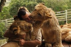 Kevin Richardson, The Lion Whisperer.