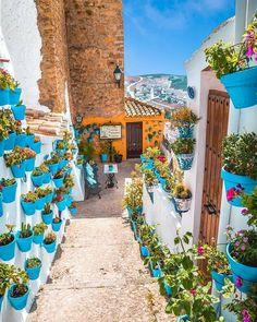 """7,069 """"Μου αρέσει!"""", 92 σχόλια - ESPAÑA 🇪🇸 SPAIN 🇪🇸 (@espanapic) στο Instagram: """"Iznájar, Cordoba, Andalucía 🇪🇸🇪🇸🇪🇸🇪🇸🇪🇸😍😍😍 ❤❤❤️💛💛💛❤❤❤ Hermosa foto por @delafuentecam • • • • •…"""" Miguel Angel, Tunisia Travel, Malaga, Stairs To Heaven, Andalucia Spain, Barcelona, Destination Voyage, Beautiful Places To Travel, Amazing Places"""