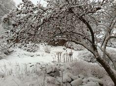 talven kynnyksellä
