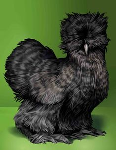 Silkie Chicken (Digital art; not a photograph.)