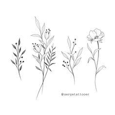 54 Ideas Design Tattoo Ideas Draw Sketch Inspiration - Your dream wedding and venue organization, Your dream wedding and venue organization Mini Tattoos, Cute Tattoos, Body Art Tattoos, Small Tattoos, Tatoos, Small Flower Tattoos For Women, Floral Illustrations, Botanical Illustration, Floral Drawing