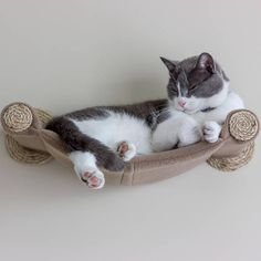 Cat Hammock  Wall Mounted Cat Shelf  Beige