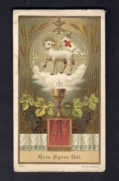 Holy Card  ** Behold the Lamb of God **