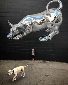 Dunedin, New Zealand: new piece by Bikismo for Dunedin Street Art. #streetart