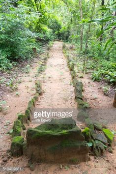 Path for walking meditation - Google Search