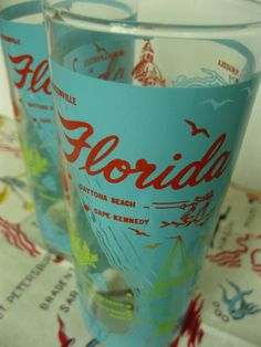 Set of 2 vintage souvenir Florida glasses
