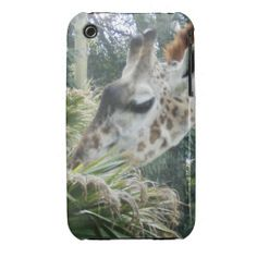 =>>Save on          Giraffe Lunch iPhone 3 case           Giraffe Lunch iPhone 3 case In our offer link above you will seeReview          Giraffe Lunch iPhone 3 case please follow the link to see fully reviews...Cleck Hot Deals >>> http://www.zazzle.com/giraffe_lunch_iphone_3_case-179312134821576088?rf=238627982471231924&zbar=1&tc=terrest