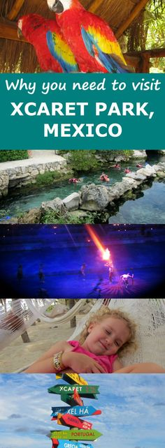 Our Guided Tour and Review of Xcaret Park in Mexico