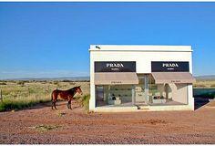 Prada Marfa with Mule, 19x13 on OneKingsLane.com