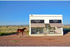 """If you've never been to Marfa, TX or West TX you prob will not get the irony of this!    In 2005, two artists teamed up with Prada to create their perfect """"hyper-commercialism"""" vision of a free standing stylish boutique. Once filled with purses and shoes, the doors were sealed, never to be reopened again. With no access to the public, it seems that the purpose was to build not just a chic shop, but a fashionable objet d'art."""