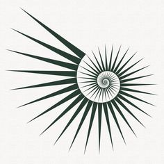 Fibonacci spirals - exploring the Fibonacci numbers in a series of illustrations : Studio Fredrik Skåtar