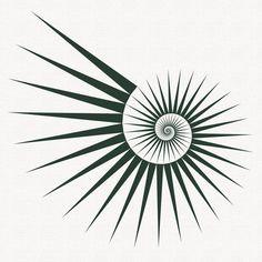 Fibonacci spirals -