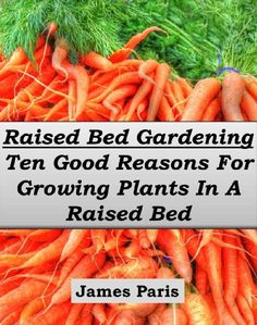 Free eBook for a limited time (no Kindle required). Download to your Kindle app or Cloud Reader for PC (opens into a browser) now before the price increases (follow http://pinterest.com/earthora/free-green-living-ebooks-from-greenebooksorg/ to hear about them first): Raised Bed Gardening – Ten Good Reasons For Growing Vegetables In A Raised Bed Garden (Gardening Techniques Book 5)