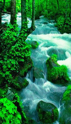 Waterfalls  Lakes Plitvice, Croatia (National Park) Is among the 20 most…