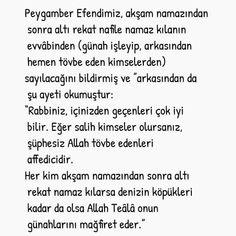 Ayet Hadis Kuran İbretlik Hikayeler Güzel Sözler | www.umys.net – UMYS.NET May 7th, Instagram Posts