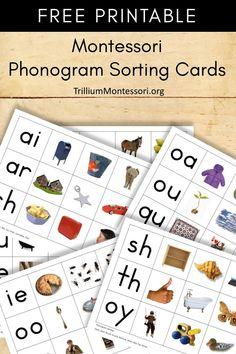 FREE Montessori Phonogram Sorting Cards