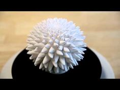 Blooming Zoetrope Sculptures - English