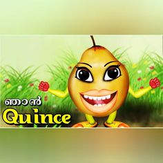 "nice The Speaking ""Quince"" 