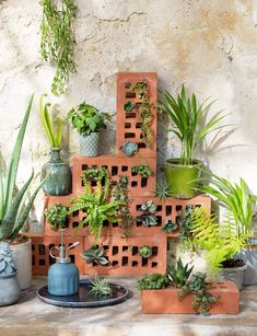 Make a brick wall Modern Flooring, Back Gardens, Brick Wall, Flower Power, Halloween Decorations, Planter Pots, Plants, Marie Claire, Garden Crafts