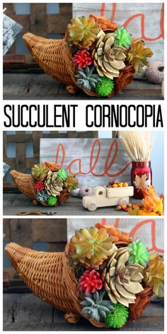 Make a succulent cor