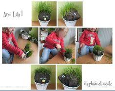 DIY GRASS HEAD !!!