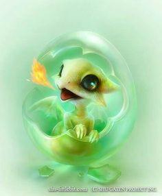 sweet baby dragon