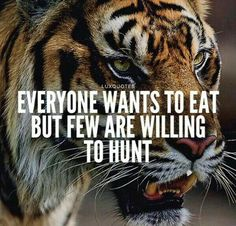"""""""It's the hunger that leads to great achievement. Lose the hunger & you limit your possibilities. Hunt with hunger. Inspirational Animal Quotes, Motivational Quotes For Men, Inspirational Quotes About Success, Meaningful Quotes, Quotes Positive, Tiger Quotes, Lion Quotes, Wisdom Quotes, Words Quotes"""