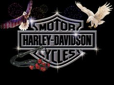 Harley Davidson Zone – The best source of Genuine Harley Davidson Accessories, Harley Davidson Motorclothes Apparel and Harley Davidson Motorcycle Parts. Everything Harley Davidson from accessories and art to watches and wheels at the best prices. Harley Davidson Images, Motos Harley Davidson, Harley Davidson Quotes, Harley Davidson Wallpaper, Motor Harley Davidson Cycles, Banners, Logo Wallpaper Hd, Wallpapers, Dark Wallpaper