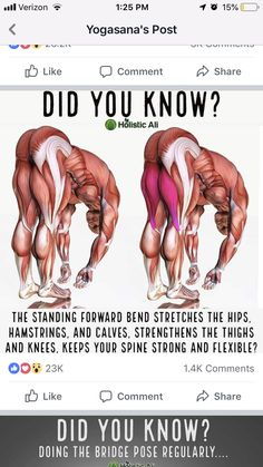 Take a look at this important photo as well as take a look at today facts and strategies on yoga exercises Physical Fitness, Yoga Fitness, Fitness Tips, Health Fitness, Yoga Moves, Stretching Exercises, Daily Stretches, Muscle Stretches, Yoga Benefits