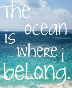 The ocean is where I belong- EXACTLY!!!! I want to live on the ocean so I can read and run there. Great Quotes, Me Quotes, Inspirational Quotes, Motivational, Quotable Quotes, Friend Quotes, Random Quotes, Meaningful Quotes, Positive Quotes