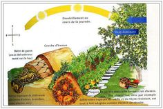 Buttes de culture Sepp Holzer - Illustration traduite en français - http://caravanedesalternatives.weebly.com/butte-en-permaculture.html