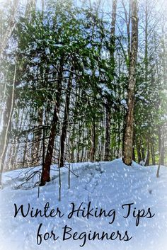 Winter Hiking Tips for Beginners