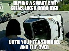 Buying a smart car seems like a good idea until you hit a squirrel and flip over