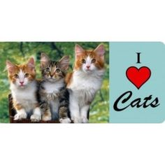 I Love Cats License Plate Kittens Pet Lover  Three Kittens Heart Free Shipping #Unbranded