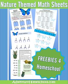 math worksheet : 1000 images about math  worksheets on pinterest  math 1st  : About Math Worksheets