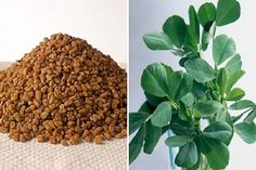 Interesting health benefits of Bitter Fenugreek Seeds (Methi)~ Bitter yellow brown seeds with bitter taste, Fenugreek help to lower LDL cholesterol levels. They help to prevent colon cancer by binding themselves to toxins. With fibre and Lose Weight Naturally, Reduce Weight, Herbal Colon Cleanse, Lower Ldl Cholesterol, Cholesterol Levels, Reduce Hair Fall, Lowering Ldl, Hcg Diet, Medicinal Herbs